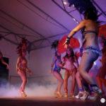 dann-danseuse-samba