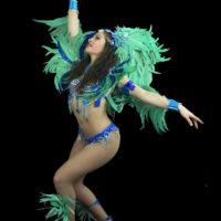 Dann-samba
